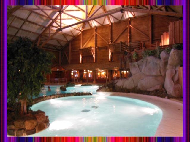 Disney's Hôtel Davy Crockett - Page 37 Villag16