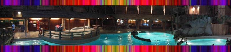 Disney's Hôtel Davy Crockett - Page 37 Villag21