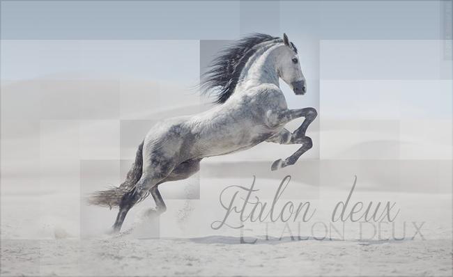 Etalon Etalon10