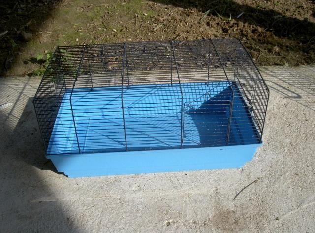 Cages toutes sortes à vendre (41, centre, rp) AJOUTS!!! 10178010