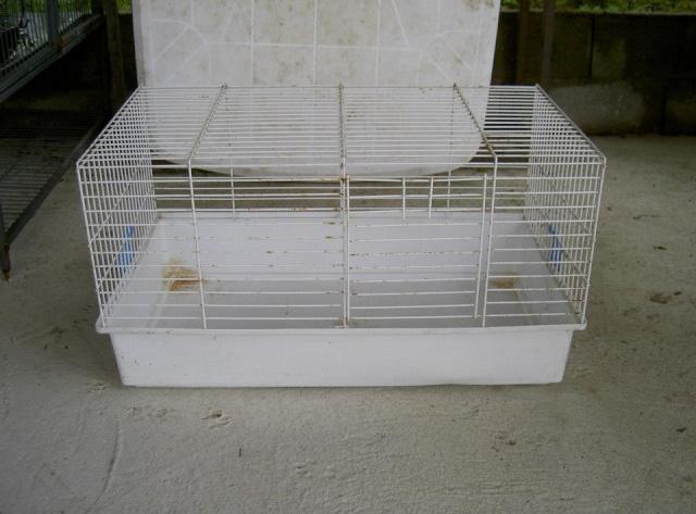 Cages toutes sortes à vendre (41, centre, rp) AJOUTS!!! 10250110