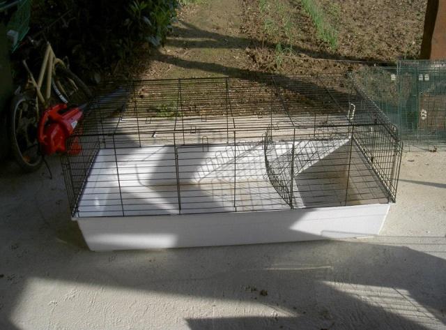 Cages toutes sortes à vendre (41, centre, rp) AJOUTS!!! 10322710