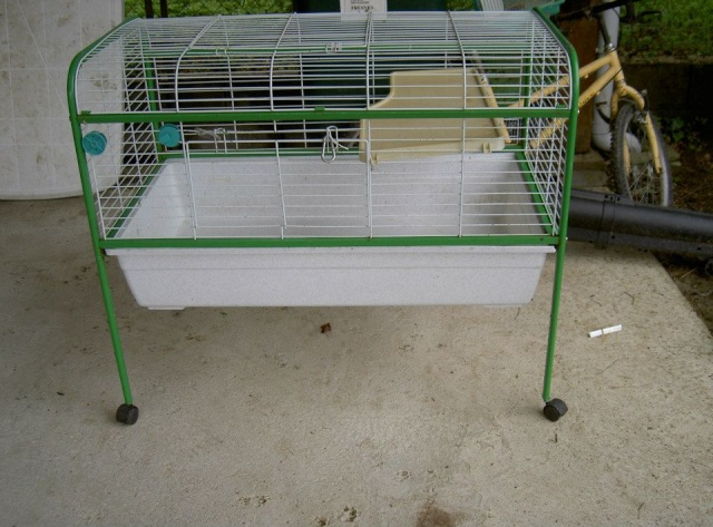 Cages toutes sortes à vendre (41, centre, rp) AJOUTS!!! 10339710