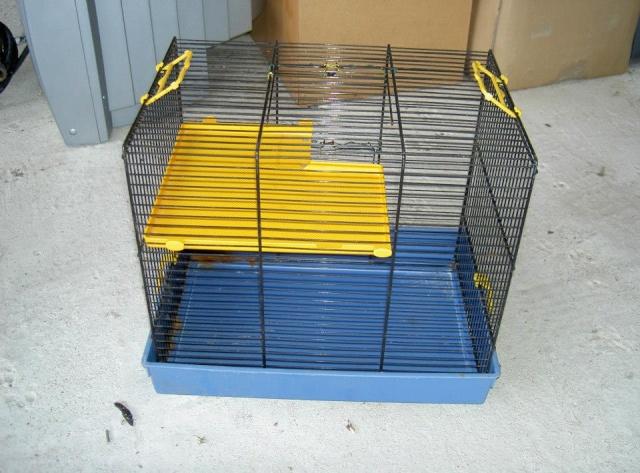 Cages toutes sortes à vendre (41, centre, rp) AJOUTS!!! 19725510