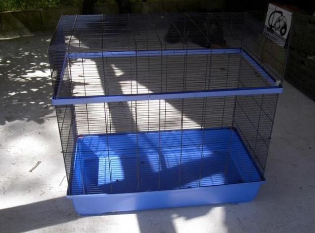 Recherche cage Loiret 19819410
