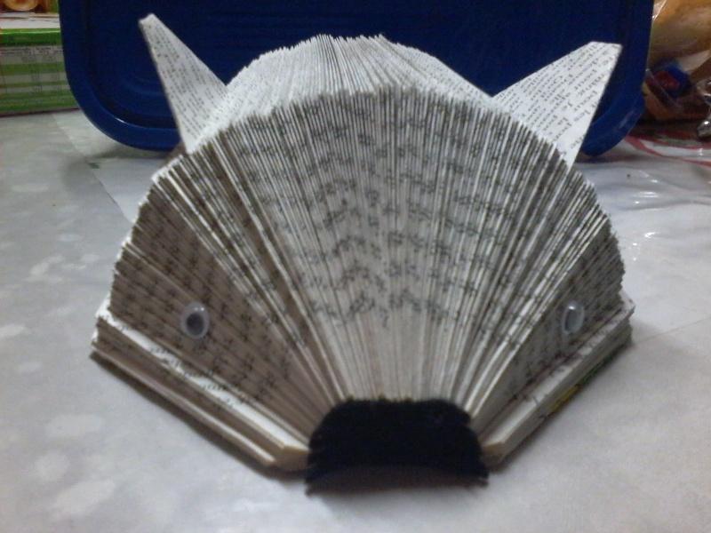 Pliage de livres Photo158