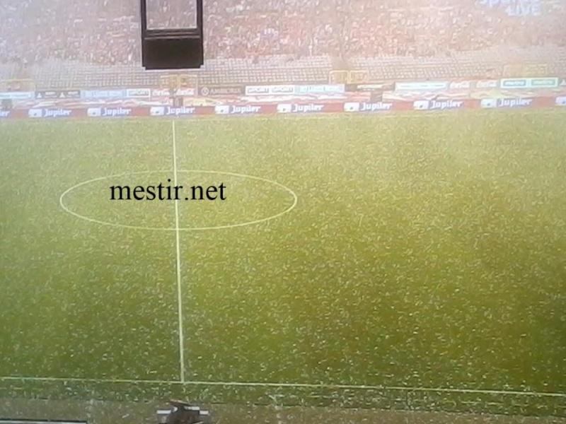 Match amical:  Belgique - Tunisie Bel10