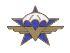 Francis GARNIER (VS) est décédé le 5 juillet à l'âge de 91 ans. Breveté n° 943, il a participé avec le régiment aux combats de libération de la France. 0_1er_13
