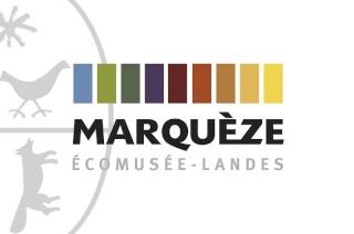 NUIT DES ETOILES dimanche 7 août 2016 à Sabres (40) Marque10