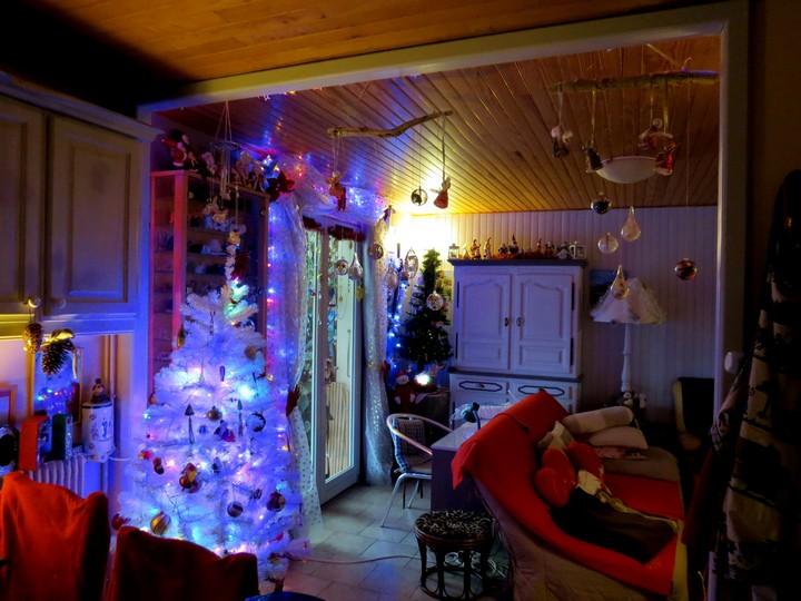 sapin de Noël  - Page 3 Img_4315
