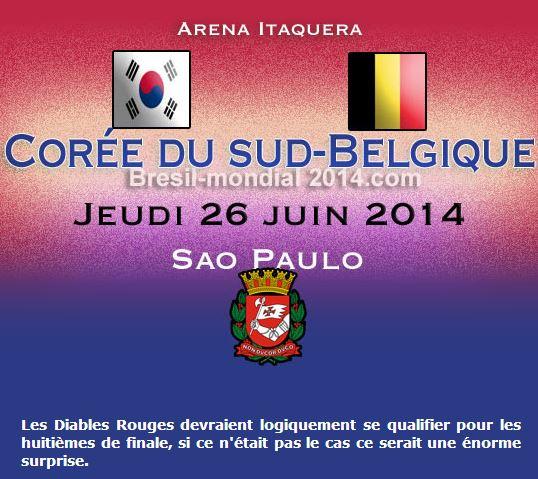 Belgique: même la police supporte l'équipe de foot Saopau10