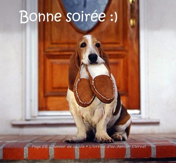 BONNE SOIREE DE DIMANCHE Bonne-10