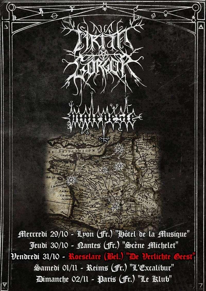 Du 29/10 au 02/11 : Tournée de Cirith Gorgor - France/Belgique Cirith10