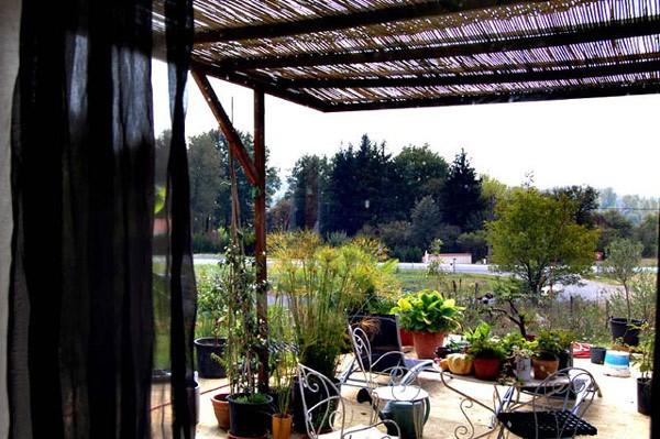41 - Le jardin vu d'une fenêtre... le vote 00510110