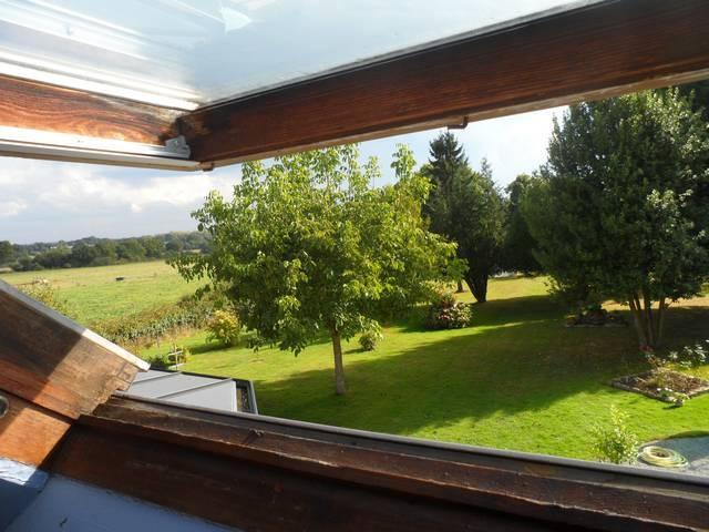41 - Le jardin vu d'une fenêtre... le vote 0052010