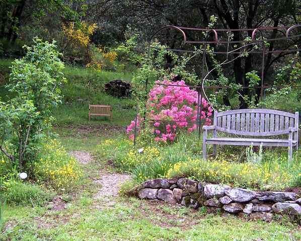 42 - La pierre, le bois, le fer... au jardin...  Le vote - Page 2 19-ros10