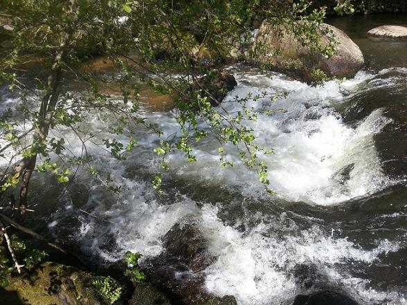 40 - Les cours d'eau.....Le vote 2013-010