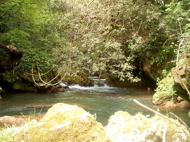 40 - Les cours d'eau.....Le vote 56958810