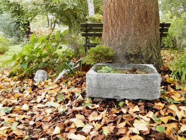 42 - La pierre, le bois, le fer... au jardin...  Le vote - Page 2 Concou10