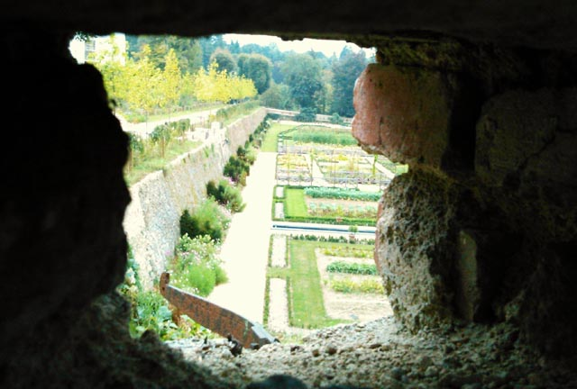 41 - Le jardin vu d'une fenêtre... le vote Dsc_0310