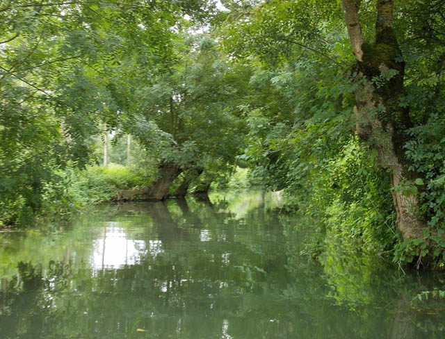 40 - Les cours d'eau.....Le vote Dscn8811