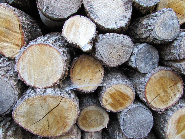42 - La pierre, le bois, le fer... au jardin...  Le vote Img_0018