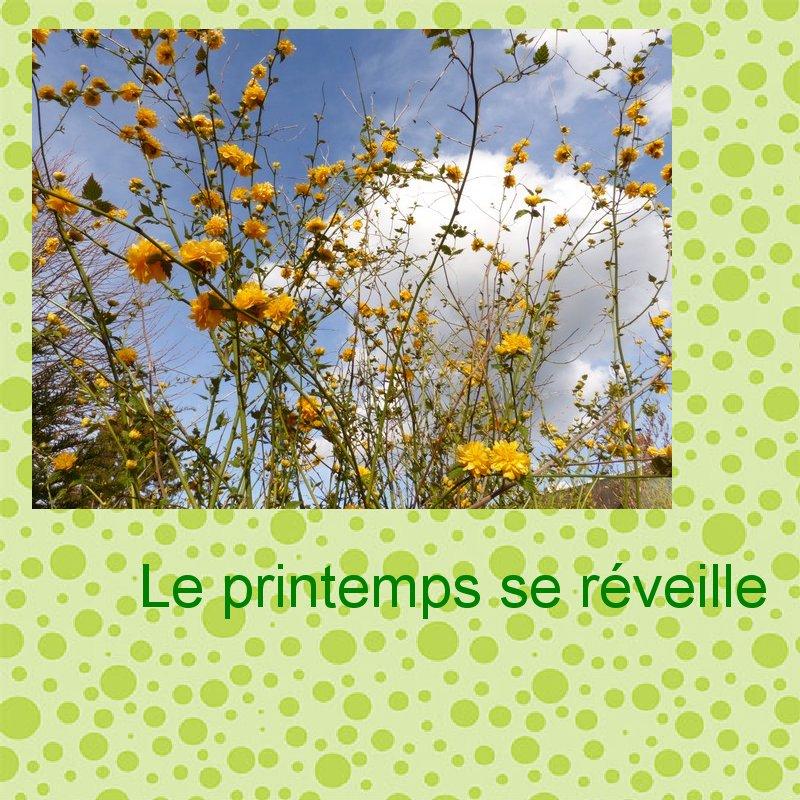 Tuto 1 _  photo sur papier scrap et titre  Le_pri10