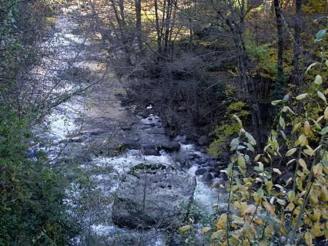 40 - Les cours d'eau.....Le vote Octobr10