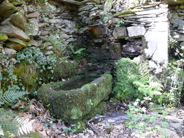 42 - La pierre, le bois, le fer... au jardin...  Photos reçues P1110910