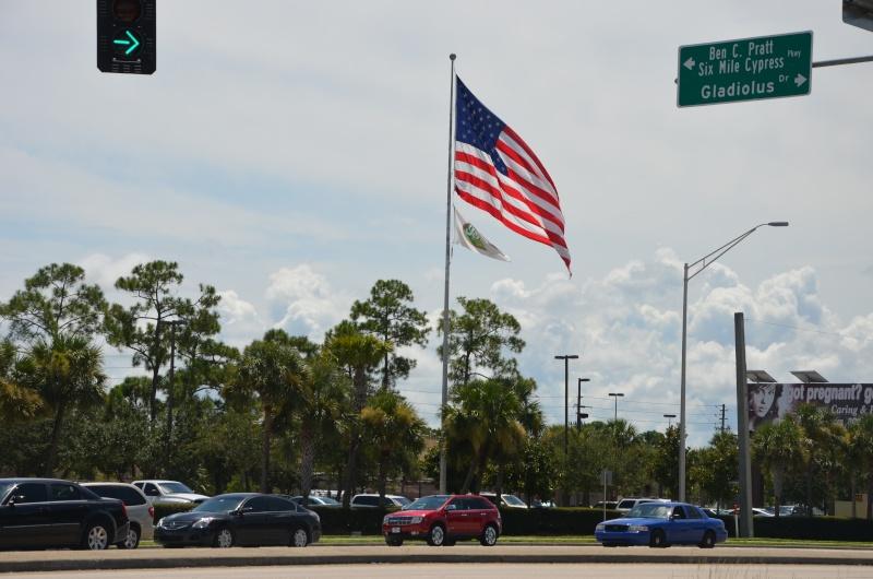 """7 États du Sud des USA - 5000 Km - 25 jours : """"De Miami à New Orleans via Atlanta"""" - Page 5 Dsc_0315"""