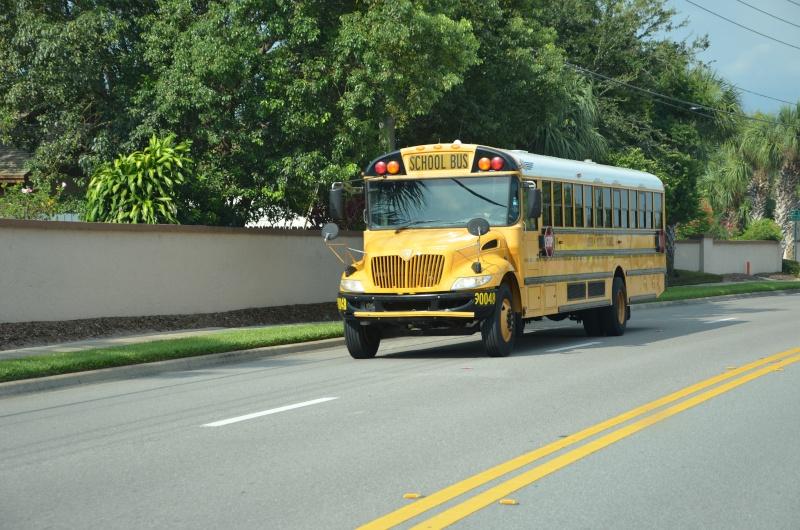"""7 États du Sud des USA - 5000 Km - 25 jours : """"De Miami à New Orleans via Atlanta"""" - Page 7 Dsc_0460"""