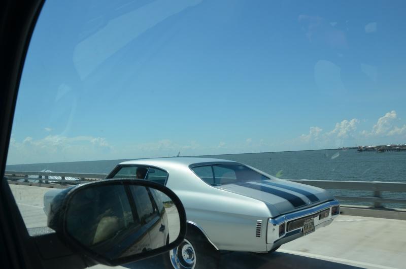 """7 États du Sud des USA - 5000 Km - 25 jours : """"De Miami à New Orleans via Atlanta"""" - Page 11 Dsc_0844"""