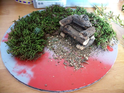 Diorama forêt: on commence! - Page 2 100_4918