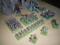 [Figurines] Mes elfes noirs & hauts-elfes Imgp6010