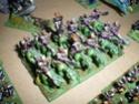 [Figurines] Mes elfes noirs & hauts-elfes Imgp6013