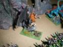 [Figurines] Mes elfes noirs & hauts-elfes Imgp6014