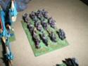 [Figurines] Mes elfes noirs & hauts-elfes Imgp6015