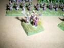 [Figurines] Mes elfes noirs & hauts-elfes Imgp6016
