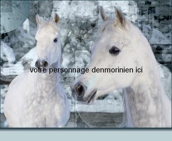 Dons Megha pour Denmoriny 2den2v10