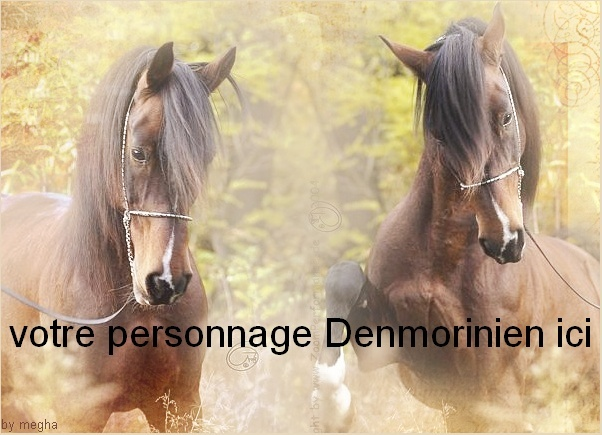 Dons Megha pour Denmoriny X110