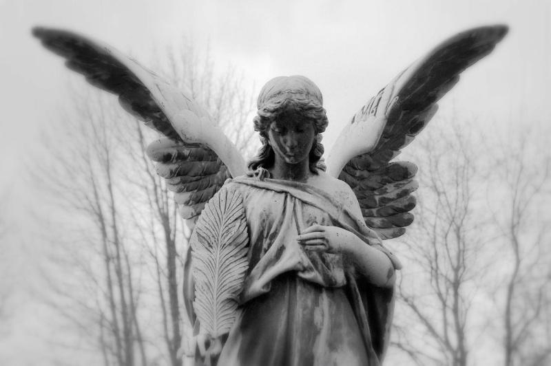Les séries de chiffres et les Anges Anges510