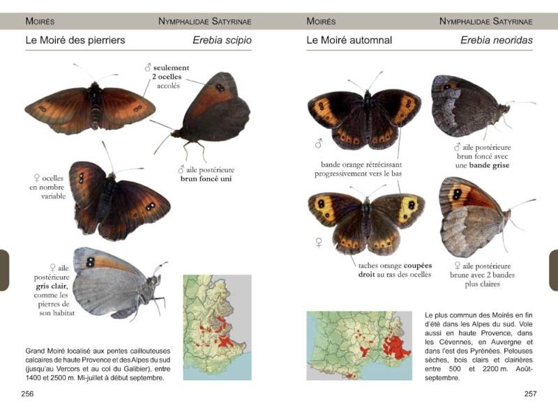 Papillons de France -NOUVEAU- 97829513