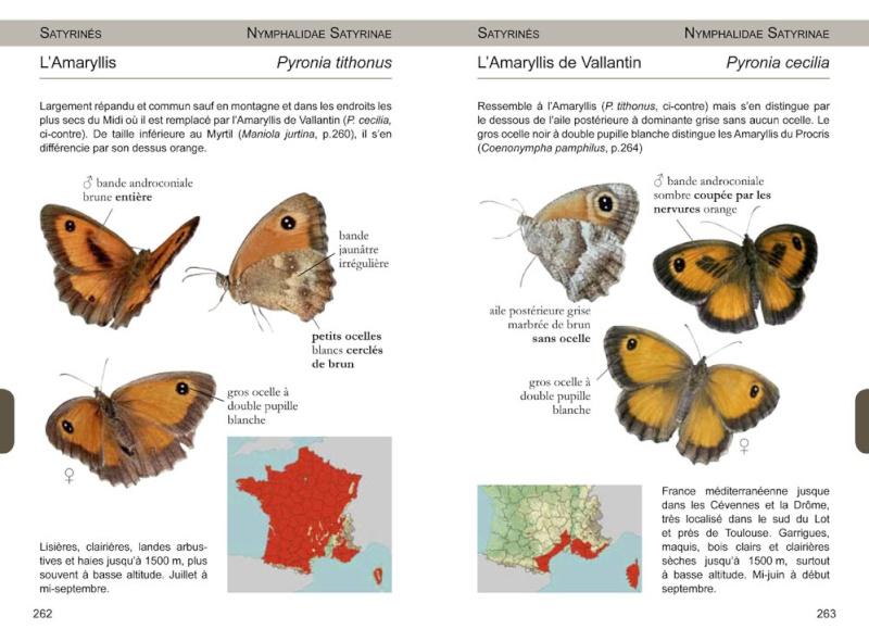Papillons de France -NOUVEAU- 97829514