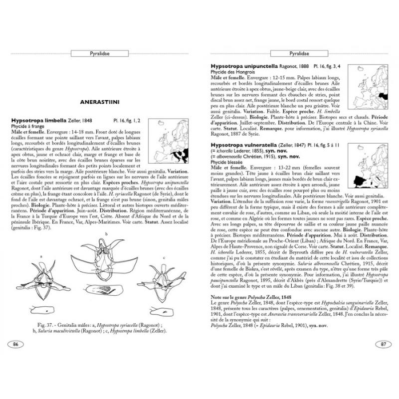Papillons de nuit d'Europe (NAP Editions) - NOUVEAU - Papill11