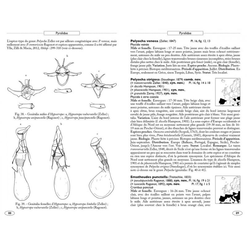 Papillons de nuit d'Europe (NAP Editions) - NOUVEAU - Papill12