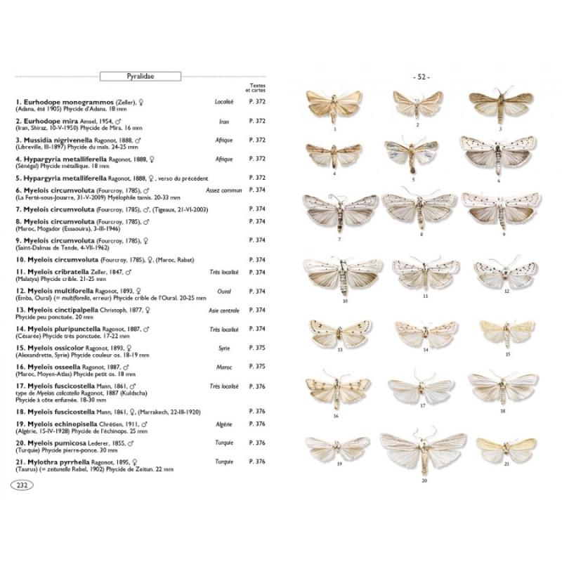 Papillons de nuit d'Europe (NAP Editions) - NOUVEAU - Papill14