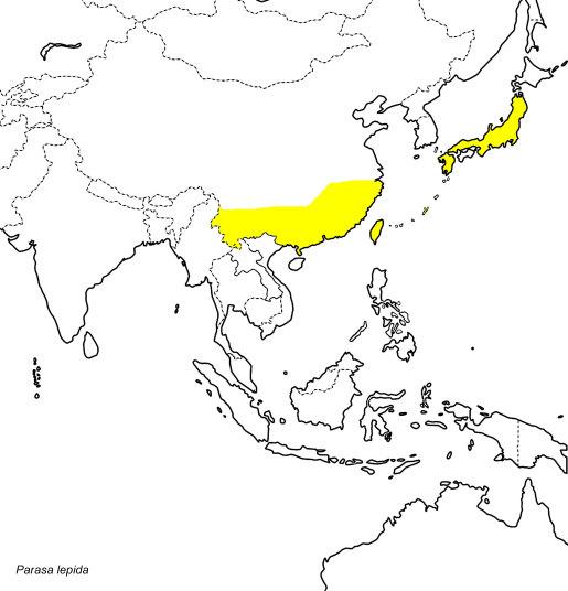 neogurelca - En passant par Kobe (Japon) - Page 2 Parasa10