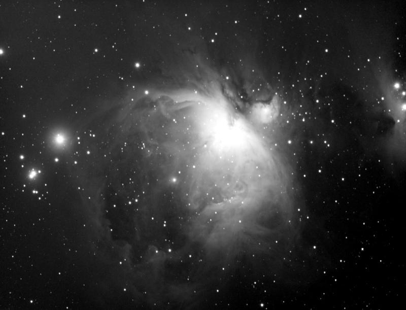 Petite soirée Astro sur Castres M42_wi10