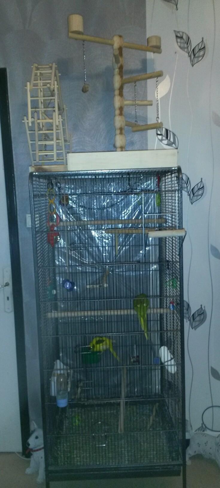 jouets Cage_e10