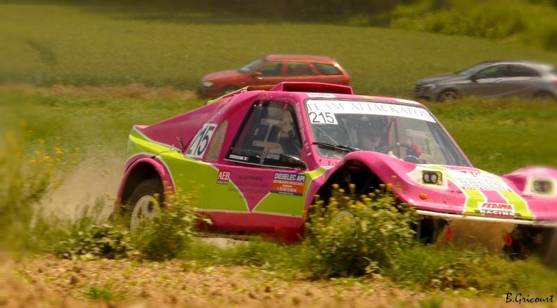 buggy - recherche photos et videos du numero 215 petit buggy rose P1330329